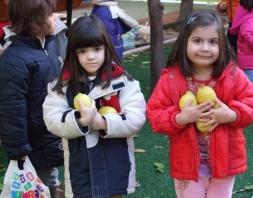 Τα λεμόνια μας